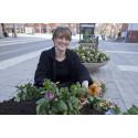 Pressmeddelande: Årets blomsterprogram invigt