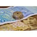 Mange har nye planer for skattepengene