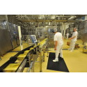 Matindustrien mindre konjunkturfølsom