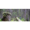 Påminnelse om pressinbjudan: idag inviger vi Filibergs naturreservat!