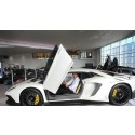 Platinum Cars blir störst i Europa