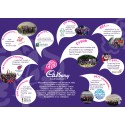 Cake for everyone as The Cadbury Foundation celebrates its 82nd birthday !