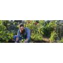 Årets frönyheter - delad odlarglädje