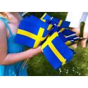 Kungaparet gästar Växjös nationaldagsfirande
