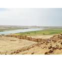 Programserie: Syriens arkeologi & historia på Medelhavsmuseet
