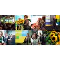 """17 maj: Ekologiska Framtidsdagen """"Mat och hållbar utveckling – från globala perspektiv till lokala lösningar"""""""