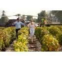 [FR] Lancement Wine Paths