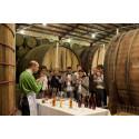 Familia Torres -viinitilan viinimatkailuelämyksille tunnustusta World Food Travel Associationilta