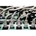 Fuld fokus på IT-sikkerheden hos Eniig