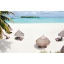 Kohtuuhintaan unelmalomalle Malediiveille