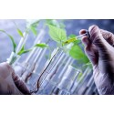 ​Agricultural Biotechnology Market Outlook to 2023 – ADAMA Agricultural Solutions, BASF, Bayer CropScience, Certis USA, Dow AgroSciences, Mycogen Seed, DuPont Pioneer