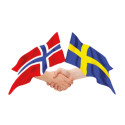 Fra ord till handling - resolution om bedre togforbindelser mellom Oslo-Stockholm og Oslo-Gøteborg