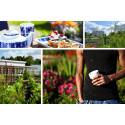 Vill du driva Jonsereds Trädgårdars nya café?