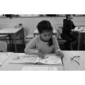Hundratals miljoner läggs på dyslexiutredningar – helt i onödan