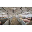 Nyt Glamox armatur til landbrugsindustrien