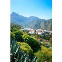 Fyra härliga vandringar på Gran Canaria