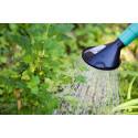 Bevattningsförbudet i Östhammar upphör den 1 oktober