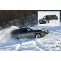 Subarulle ykköstiloja maailmalta