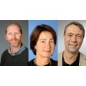 Umeåforskare vill se tuffare åtgärder för att nå klimatmål