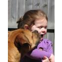 4-åringar förstår hundars språk