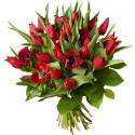 Tulpaner ny favorit till Alla hjärtans dag