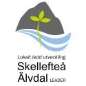 Miljoner till projekt inom Skellefteå Älvdal