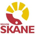 Region Skåne ger Swedish Consulting Group i samarbete med Lexicon IT-konsult nytt och utökat avtal.