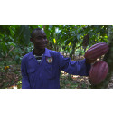 Mondelez International - Cocoa Life program