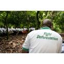 Accountability Framework: nytt ramverk guidar företag mot leverantörskedjor utan avskogning