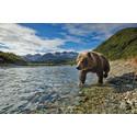 Kryssning Kanada och Alaska