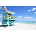 Höstlovets restrender – Miami årets raket