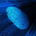 Bedrägerier är den nya tidens mängdbrott
