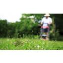 Villaägare kan få sitt trädgårdsavfall hämtat