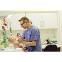 Nylanserad hälsostudie med fokus på barn rekryterar deltagare nummer 500