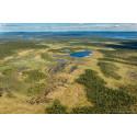 Ska vi nå naturskyddsmålen måste regeringen skruva upp takten