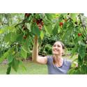 Nu är det dags att skörda  – 8 av 10 odlar frukt och grönt hemma