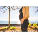 För mycket gluten under graviditeten kan öka risken att barnet får diabetes