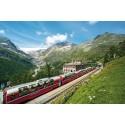 Walking the Trail of the Bernina Express