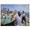 Nya akvariet Den Blå Planet är skåningarnas favorit