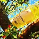 anCnoc 12år - en whisky för sommarens alla stunder