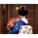 CHAPTERS EXPERIENCE HOLIDAYS BRING TO LIFE 'JAPAN SEASON'