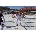 Piteå ansöker om World Cup i längdskidor