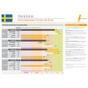 eGovernment Benchmark Report - Sweden