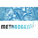 MetaboGen AB receives 4.9 MSEK for development of pharmaceutical products based on the microbiome