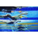 Ny stor internationell simtävling till Stockholm 2016
