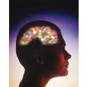Socialstyrelsens ADHD-expert Kerstin Malmberg sågad av ledande amerikansk psykiatriker