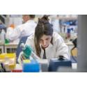 Blockering av protein möjlig väg hindra  biverkningar vid strålbehandling