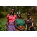 Unikt klimatsamarbete ska hjälpa 30 000 bönder ur fattigdom