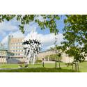 Umeå högt upp på Natures lista över mest lovande universitet