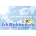Annonsera sommarjobb för Sjuksköterskor på SskWebben